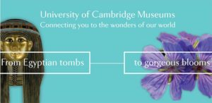 Uni of Cam Museums