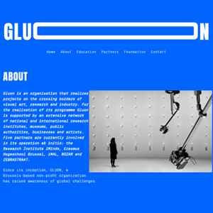 GLUON SCIENTIST IN RESIDENCE PROGRAM