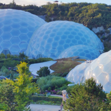 3D3 Open Research Residency at the Eden Project